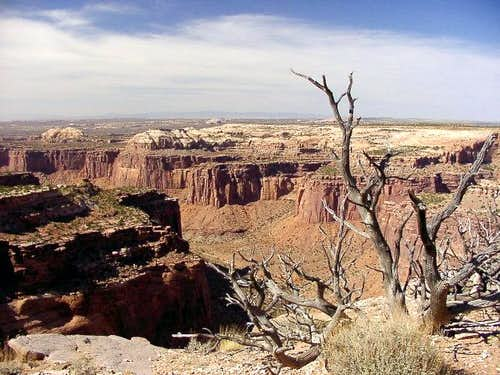 Aztec Butte Trail - view of...