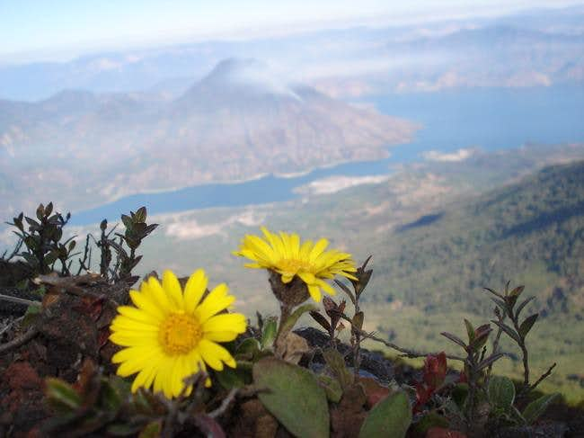 Volcan San Pedro viewed from Volcan Atitlan