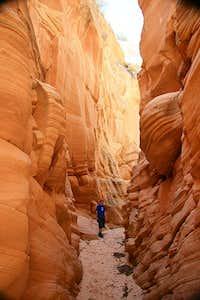 booker canyon