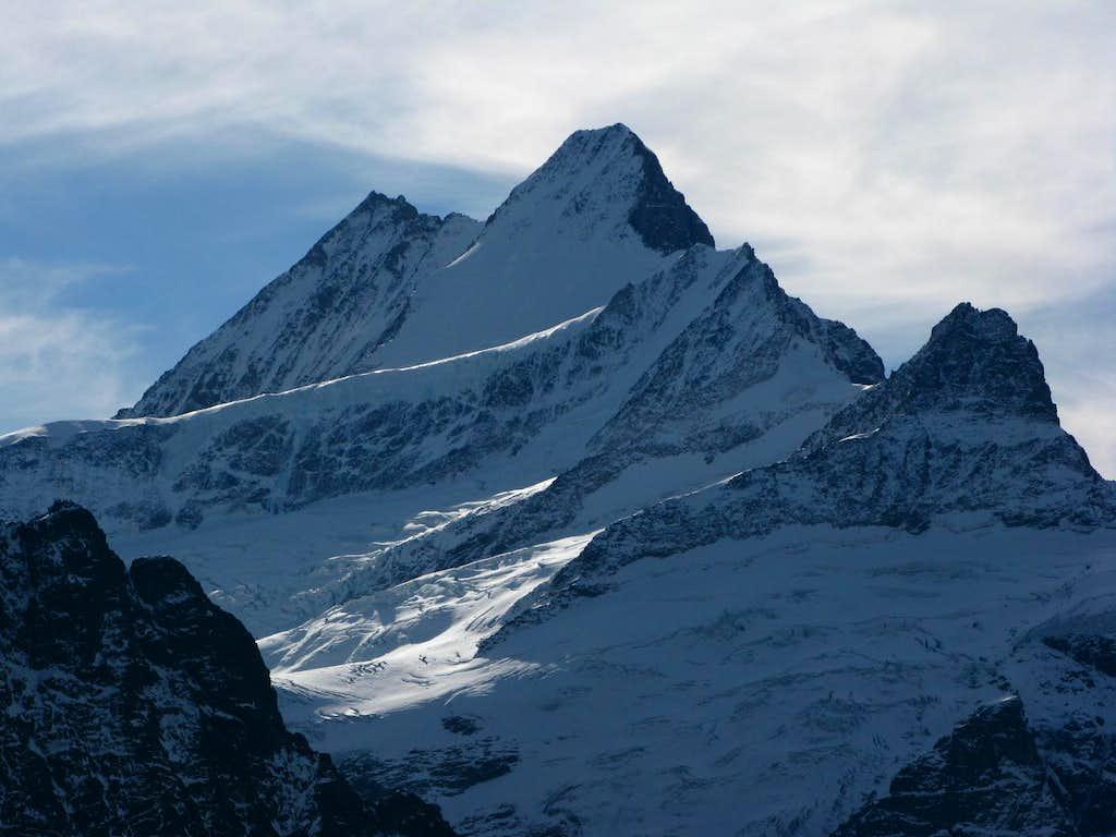 Schreckhorn 4078m