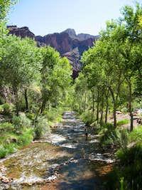 Bright Angel Creek-Phantom Ranch