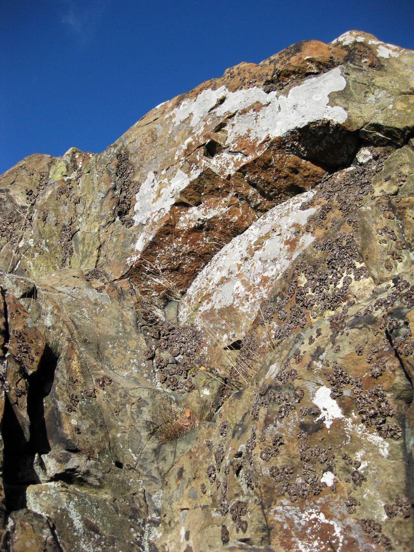 Franklin Cliffs