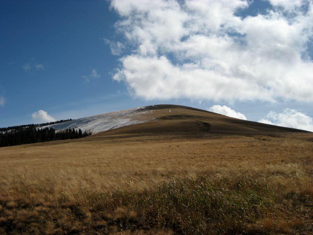 Little Bald Mountain