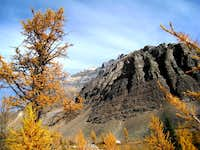 close to Larch valley 8