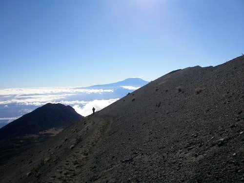 Back to Tanzania - Kilimanjaro 2008