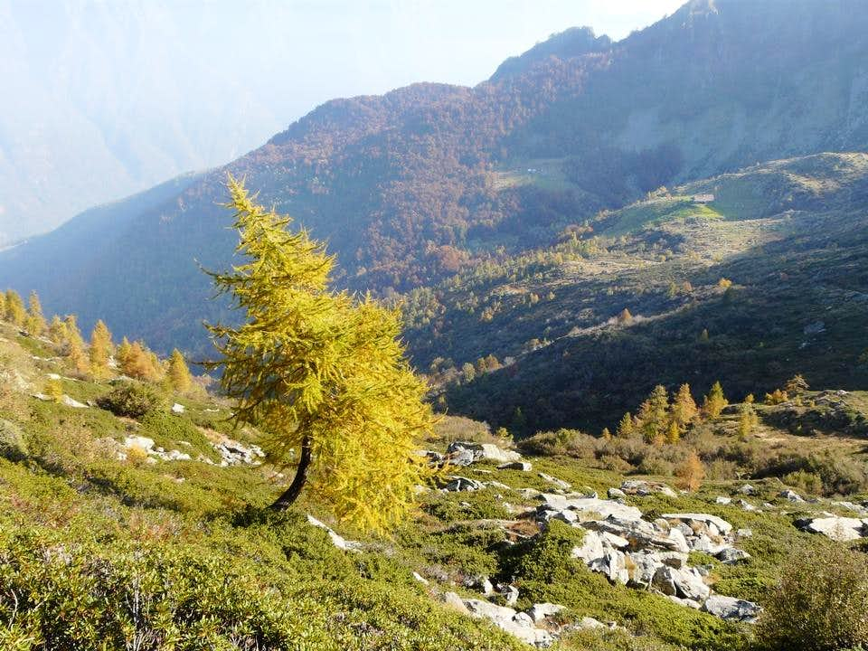Autumn in Ossola Valley