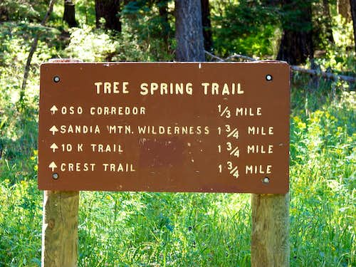 Tree Springs Sign