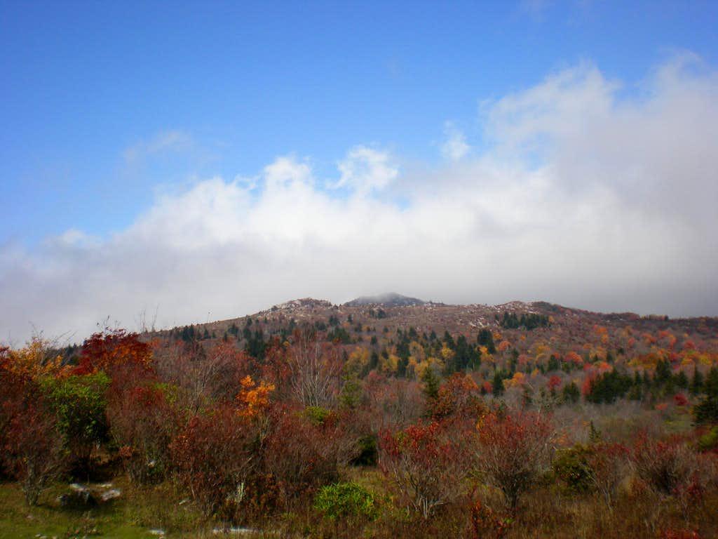 Autumn color along Wilburn Ridge