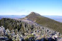 West pieak from Avery Peak