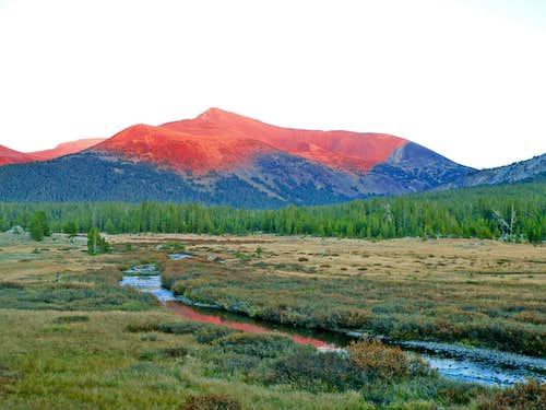 Mt. Gibbs from Dana Fork