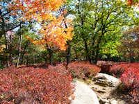 Bear Mountain in the Fall