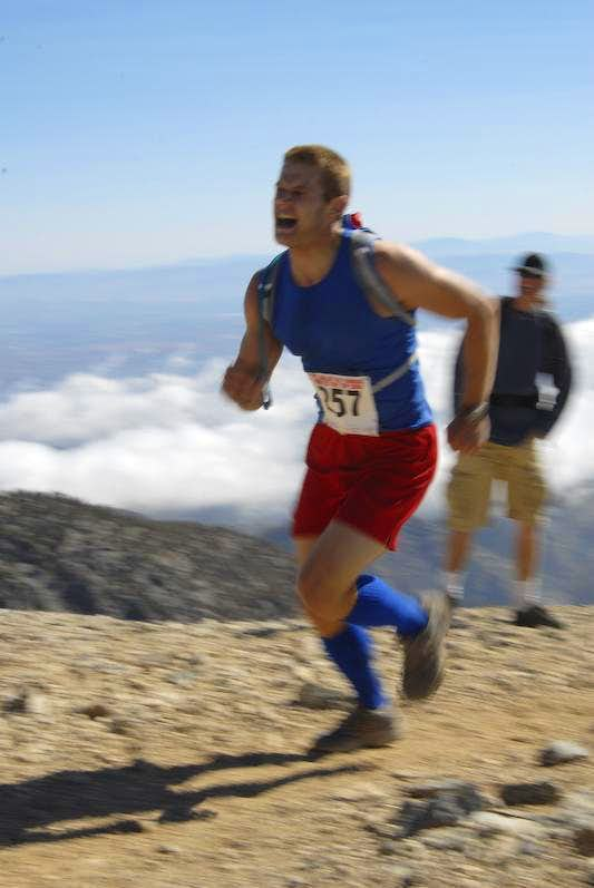 Run to the Top 2008