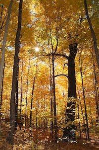 Haliburton Highlands, Canada