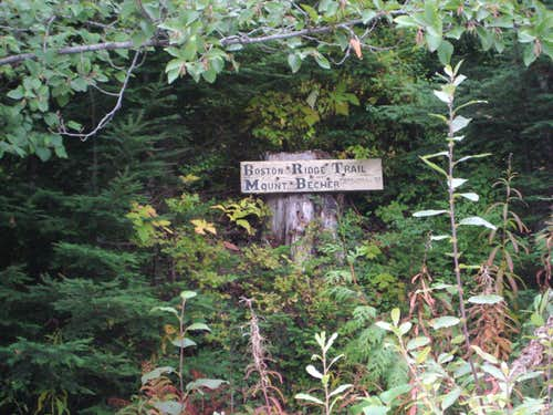 Boston Ridge/Mt Becher Trailhead