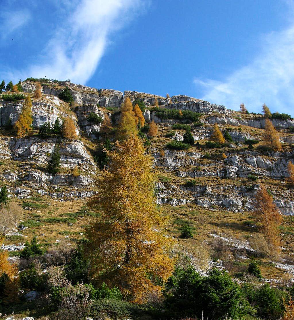 Autumn in Pasubio