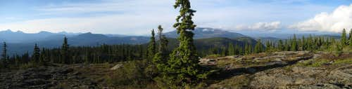Mt Drabble Summit Panorama III