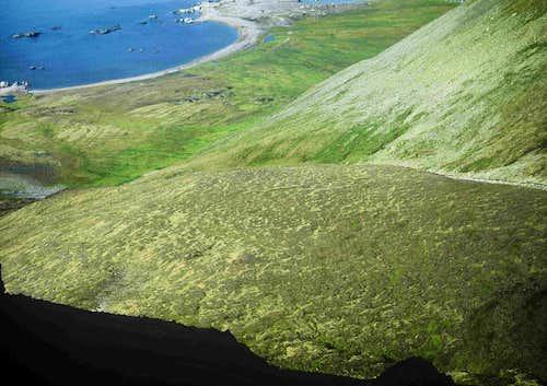 Patterned Tundra