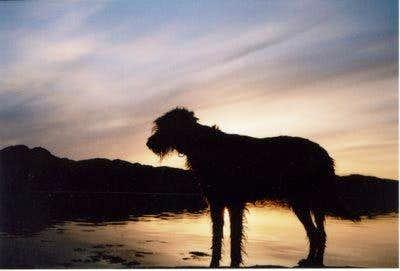 Bruach at Loch Sunart