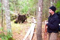 Long log bridge