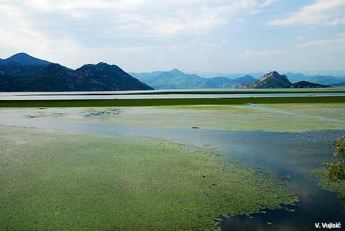 Skadarsko Jezero lake