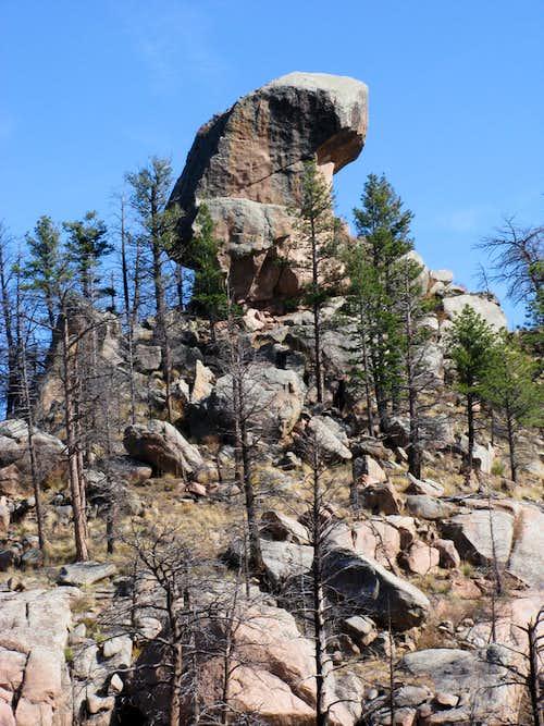 Summit Cheesman Mountain