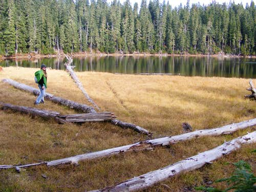 Sahalee Tyee Lake Indian Heaven