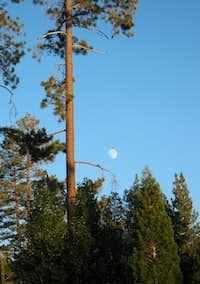 Moonrise at Big Bear