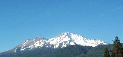 This is Shasta on right and...