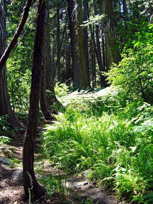Granite Lake Trail.