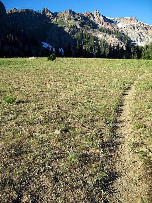 Trail in Bear Basin Meadows