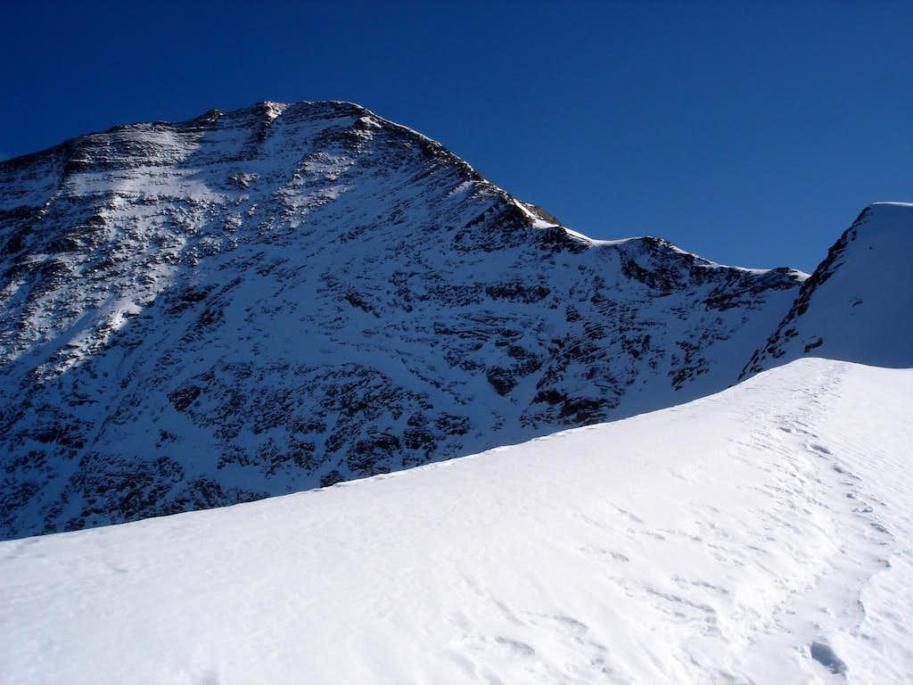 Wiesbachhorn (3564m)