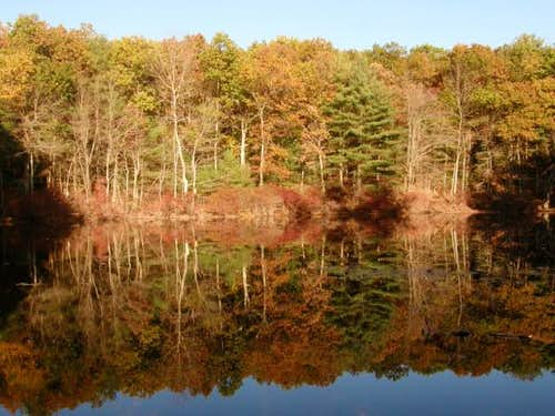 Walden Pond Reflections