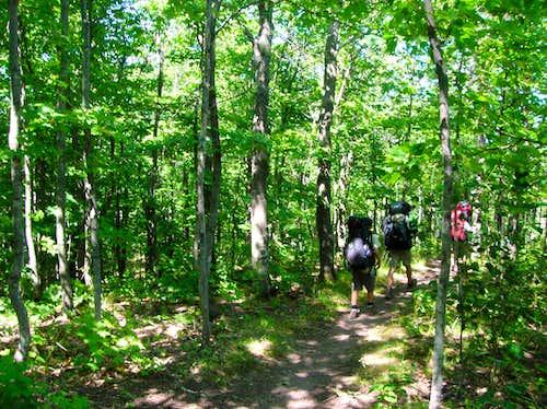 Government Peak Trail 2