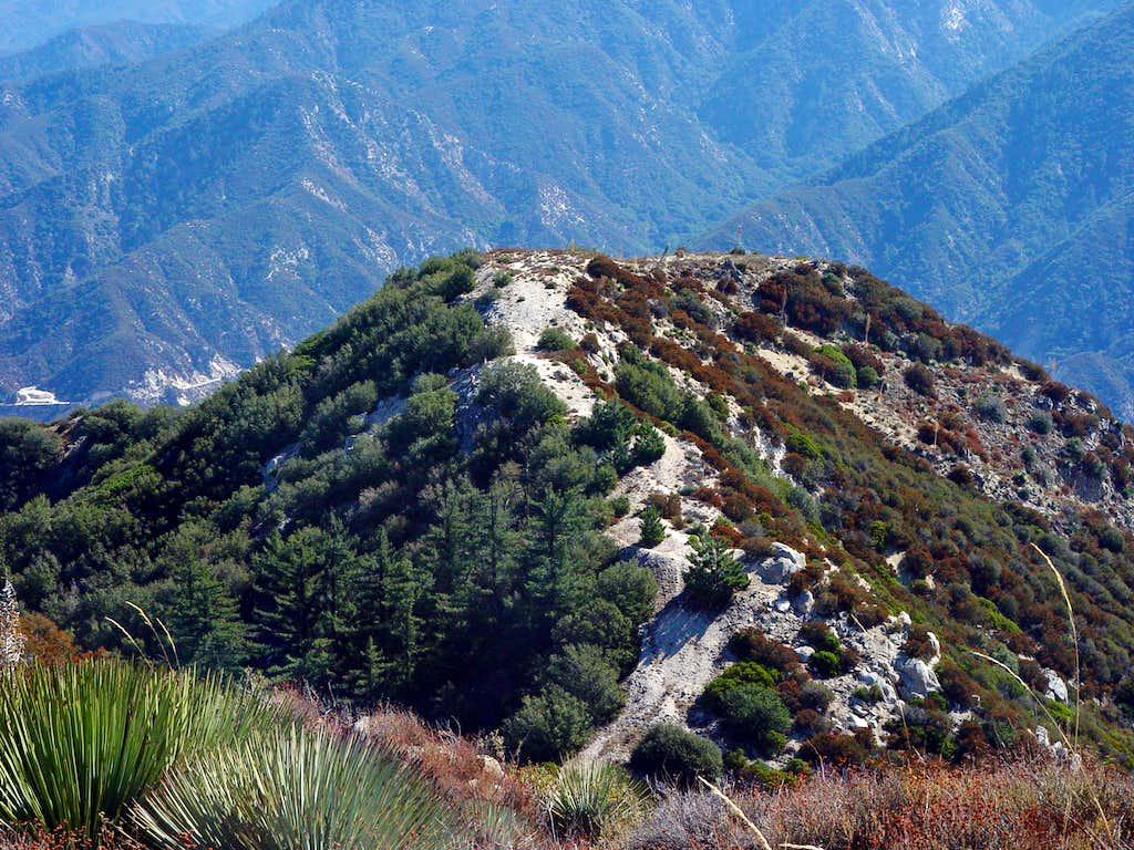 Fox Mountain East Ridge