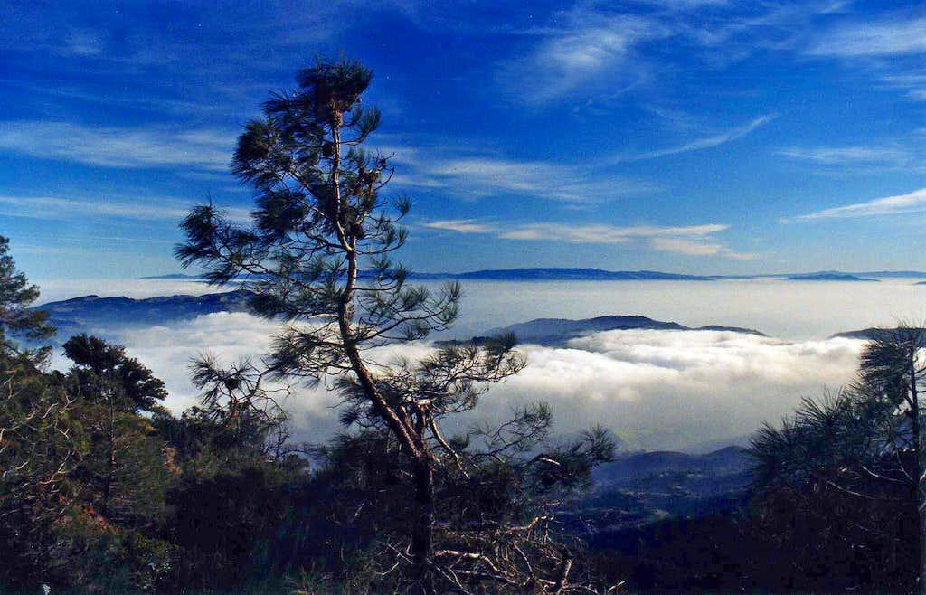 South from Mt. Diablo North Peak
