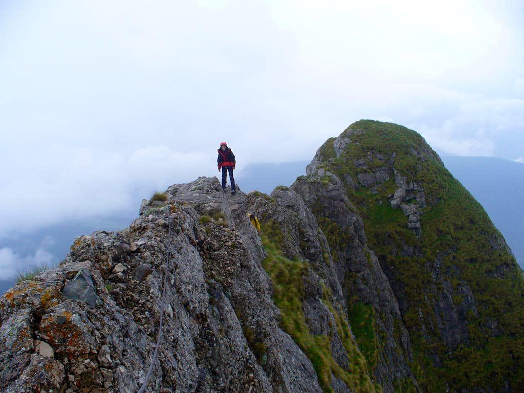 Acul Mare (Big Needle) ridge from Acele Morarului (Morar Needles) - Bucegi mountains 2
