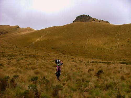Trail up to Fuya Fuya.
