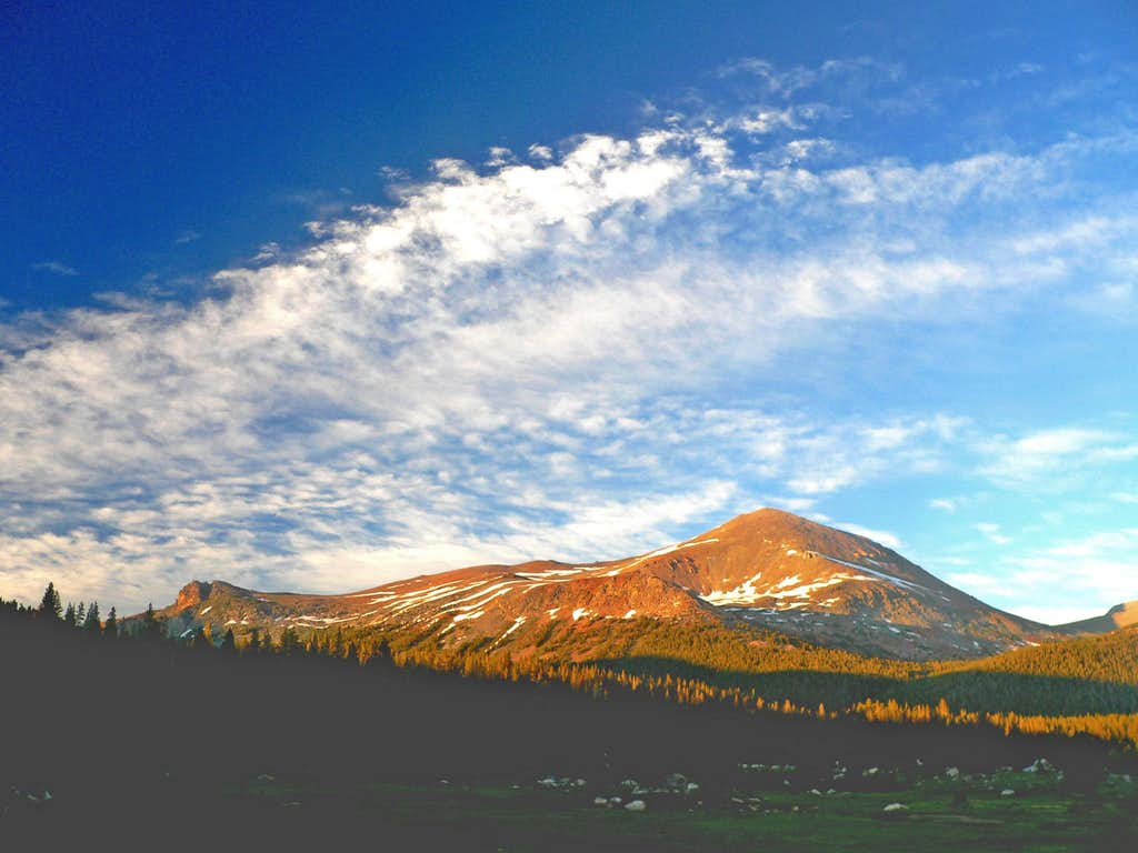 Evening apenglow on Mt Dana from Dana Fork