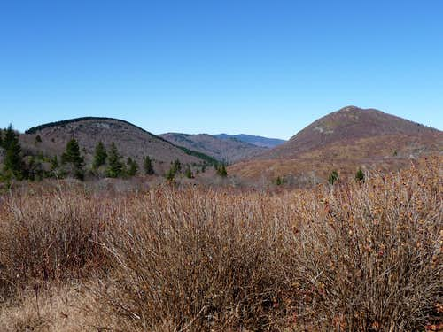 Little Sam Knob & Sam Knob from Flat Laurel Creek trail 11/1/2008