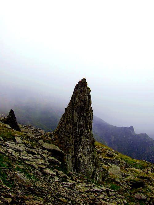 Lonely rock near Moldoveanu