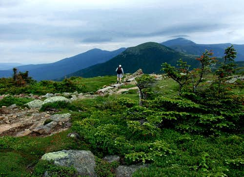 The Appalachian Trail on Pierce