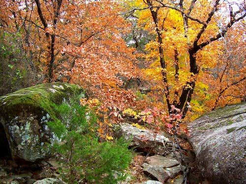 Autumn between the Peaks
