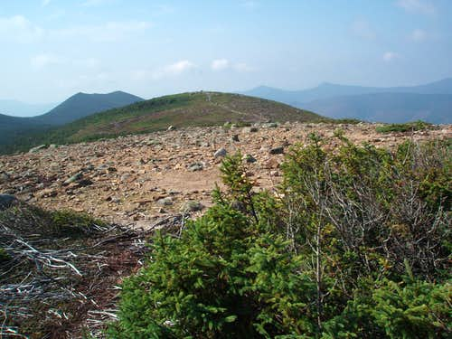 Guyot summit