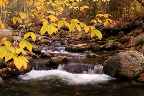 Fall beauty in the White Mountains