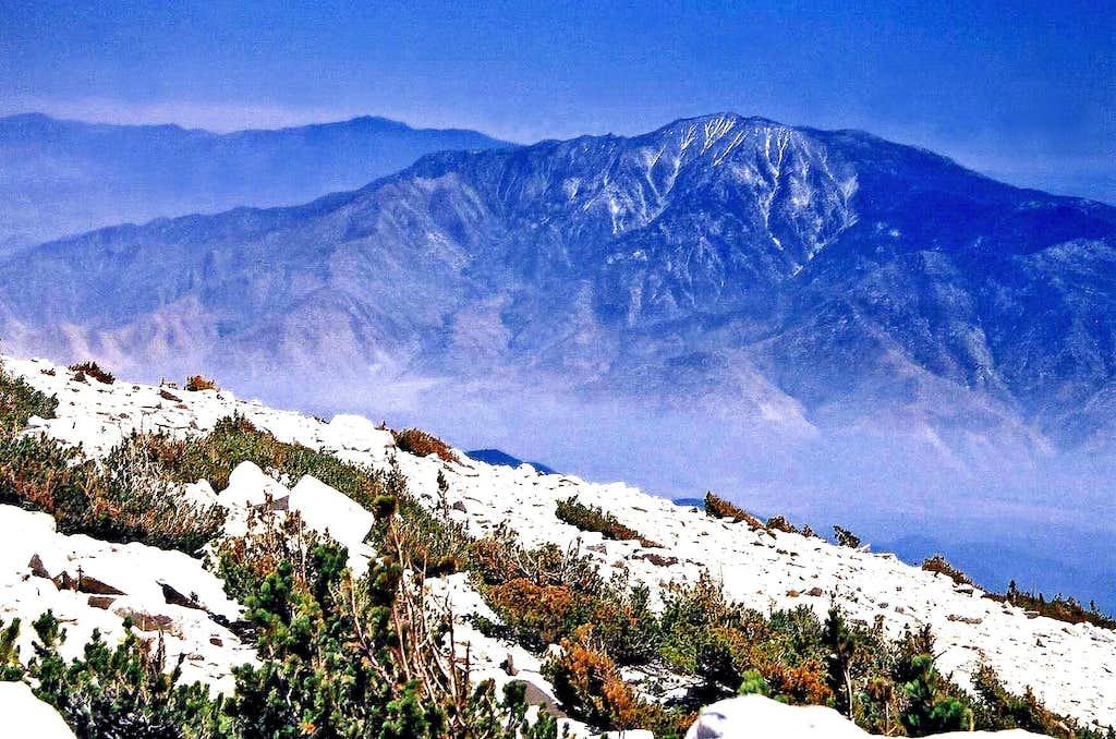San Jacinto Peak from San Gorgonio Mtn.