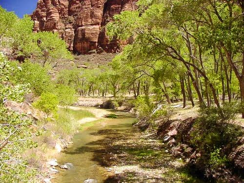Virgin River at The Grotto,...
