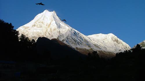 Manaslu with northsummit