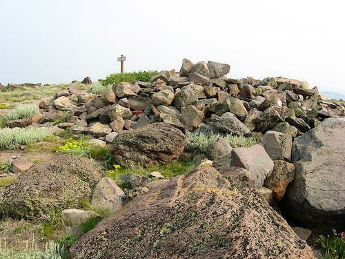 Summit Area of Mt. Lola