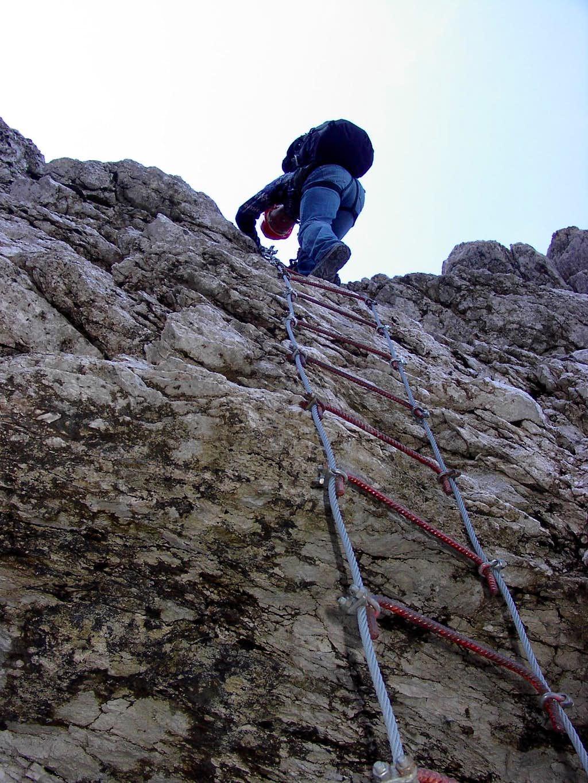 A ladder on Via della Vita