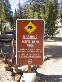 Beware of Da Bears